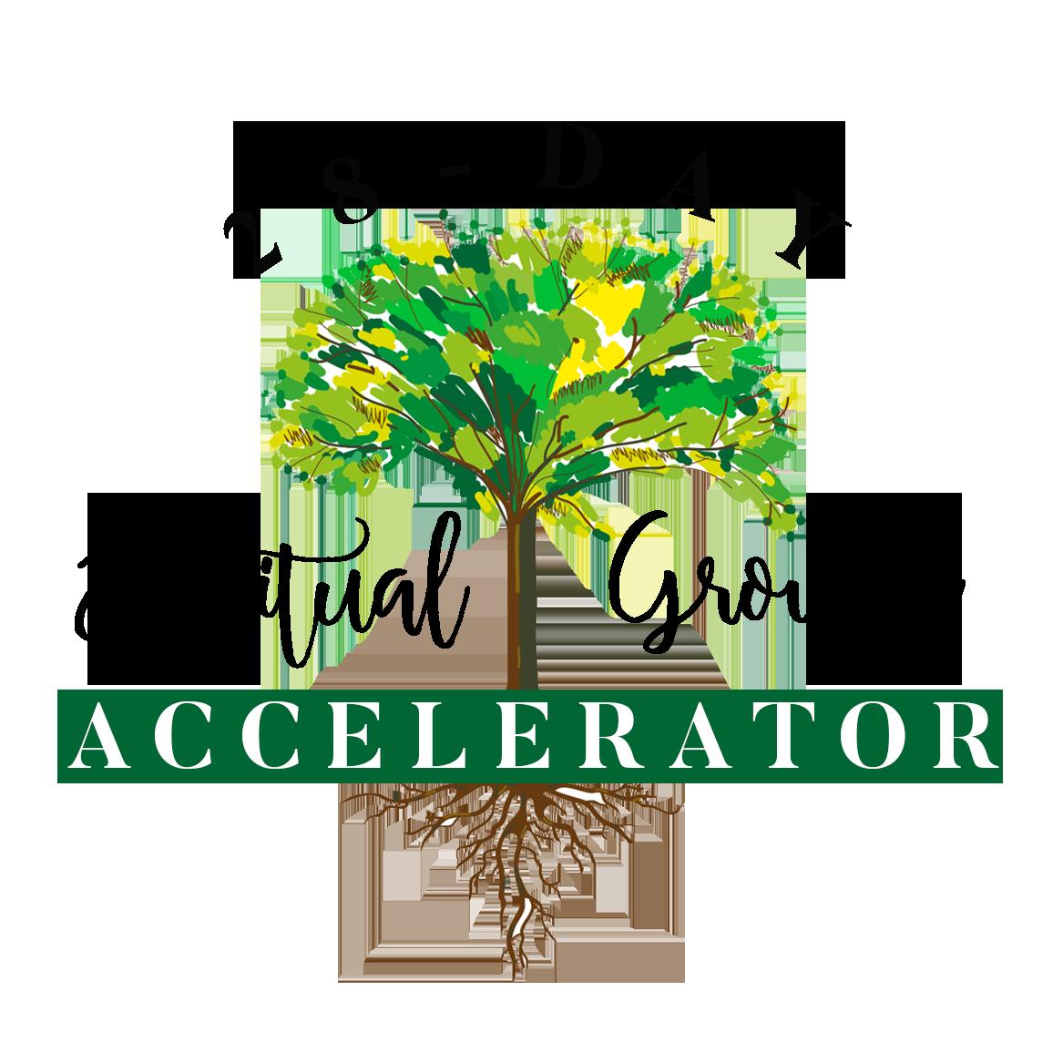 28-Day Spiritual Growth Accelerator